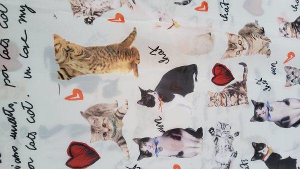 20191024 155018 Gorgeous Couture Italian Chiffon from Fashion Show/ Digital Print Cats Pattern Fabric/Milan Fashion Week Chiffon/Catwalk Cat Print Fabric 17