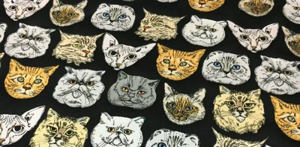Dior Designer cat design silk fabric