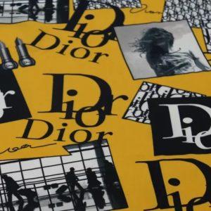 Dior silk chiffon fabric,light breathable