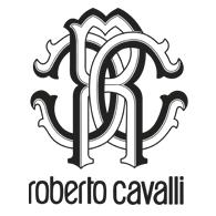 ADVANCED FILTER 66 ⋆ Rozitta Rapetti