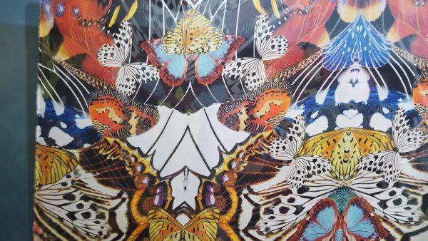 Roberto Cavalli Silk chiffon with butterflies